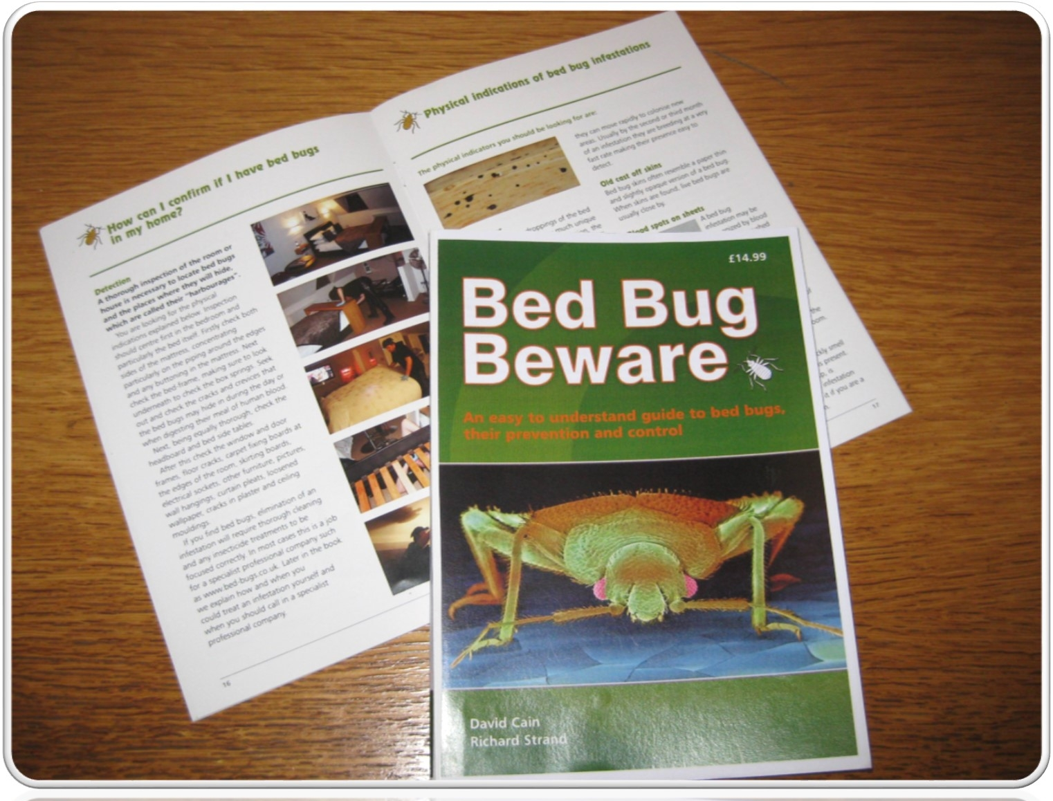 bed bug beware by david cain