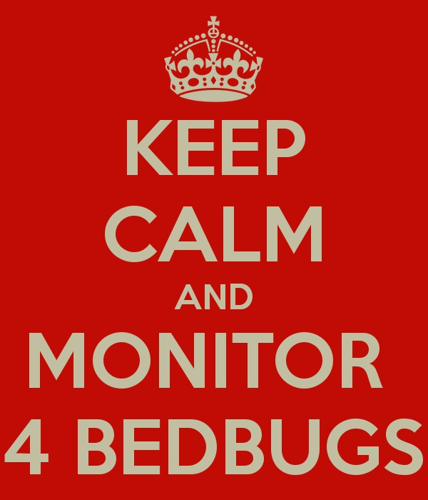 keep calm and monitor for bed bugs
