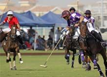 Dubai Polo Club Venuse for Elements Catering