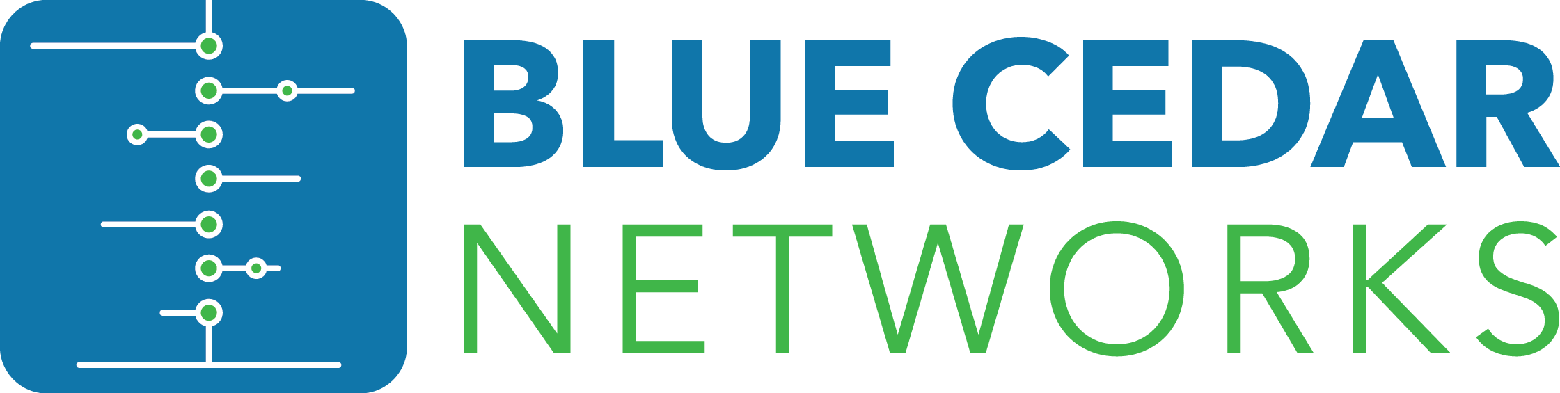 Blue Cedar Networks Logo