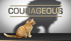 Watch sermons from our series Courageous