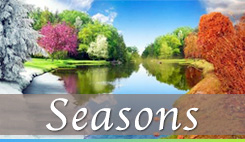 Watch sermons from our series Seasons
