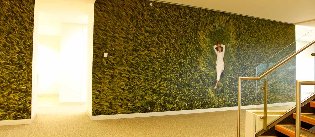 mister wallpaper - custom printed removable wallpaper
