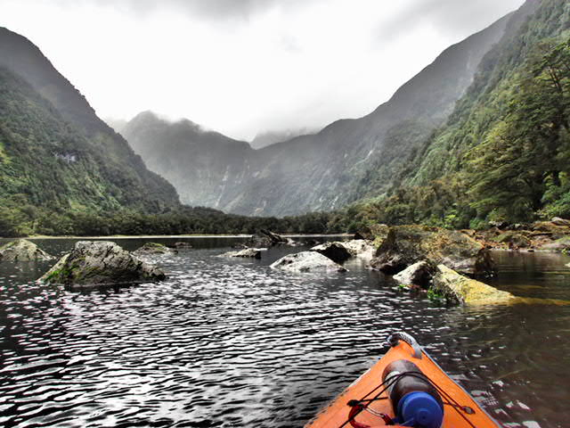Induldge in peace and quite when kayaking around the Fiordland national park in NZ with pure salt charters and the charter vessel flightless