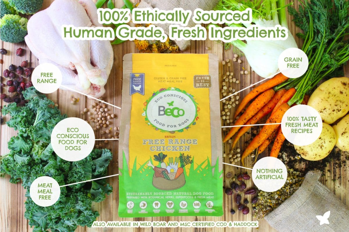 Beco Pets - Another Option For Eco-Friendly Pet Products