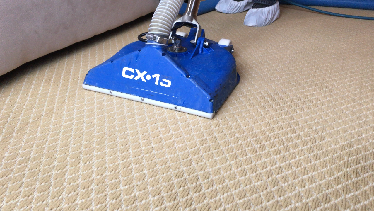 Carpet Steam Cleaner Rental Photo Carpet Steam Cleaner